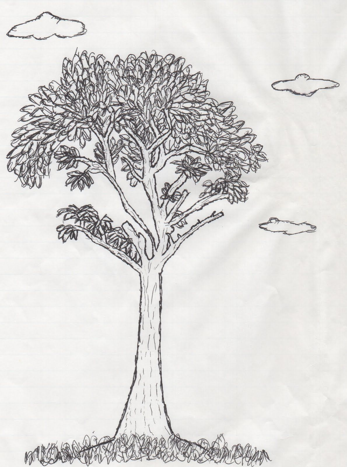 Kolay Karakalem Çalışmaları Çizimleri Örnekler