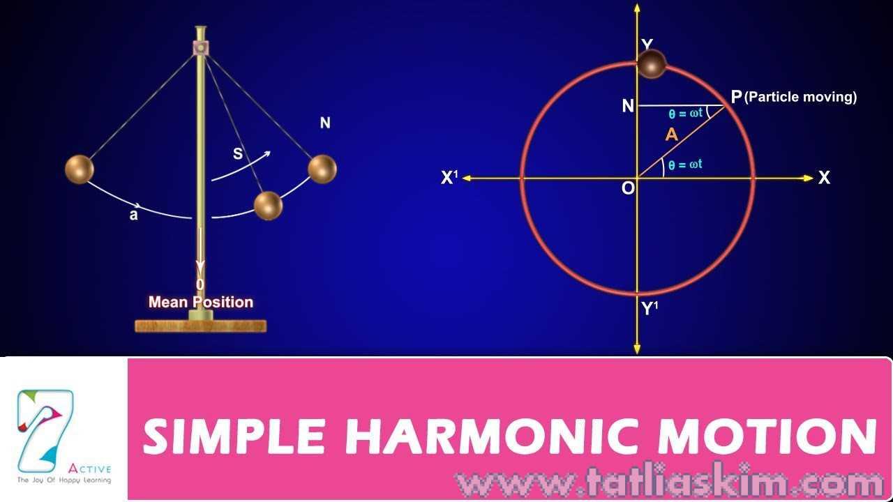 basit harmonik hareket
